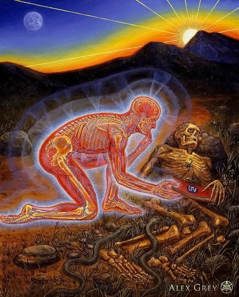 Alex Grey Samadhi